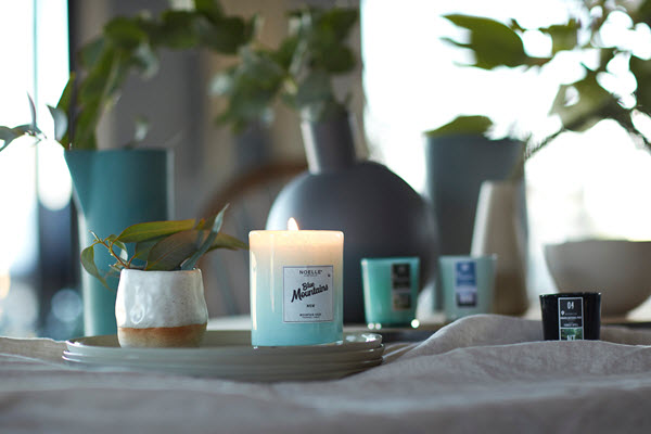 how to make an apartment homey scent